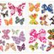 38 värikästä perhosta seinätarra 5