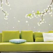 aprikoosin kukka seinätarra