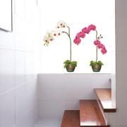 Valkoinen Ja Pinkki Orkidea Seinätarra